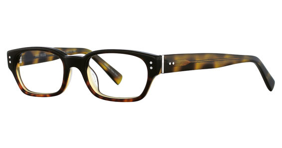 Avalon Eyewear 9003 Black/Tortoise