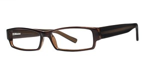 Modern Optical Roxbury Glasses