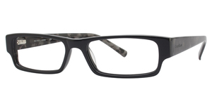 Cole Haan CH 225 Glasses