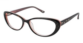 Lulu Guinness L880 Glasses