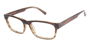 Ted Baker B864 Glasses