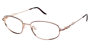Aristar AR 18410 Glasses