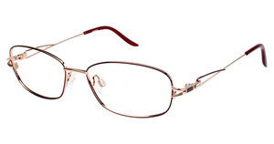 Aristar AR 18411 Glasses