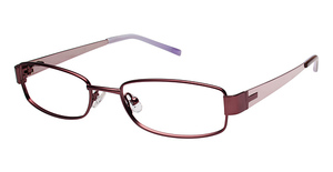 Ted Baker B224 Glasses