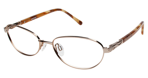 Aristar AR 16340 Glasses