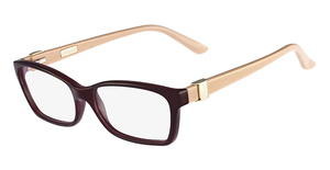 Salvatore Ferragamo SF2649 Glasses