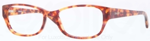 DKNY DY4646 Glasses