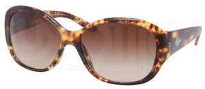 Ralph Lauren RL8091 Glasses