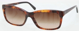 Ralph Lauren RL8093 Glasses
