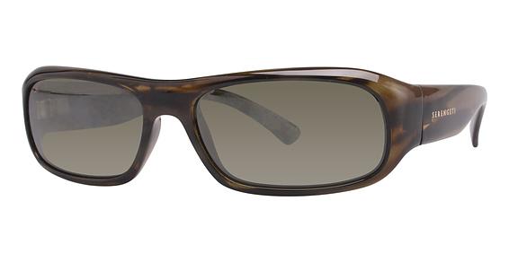 Genova Sunglasses, Dark Tortoise