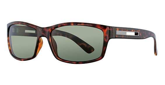 ST 173 Sunglasses, Tortoise