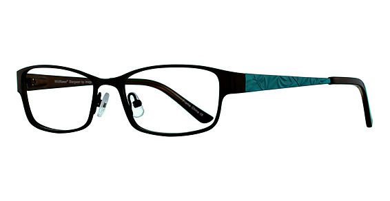 Stargazer Eyeglasses, Black Tin