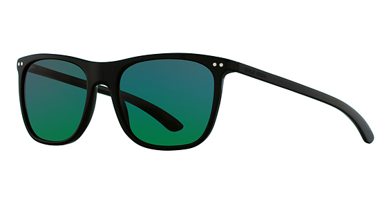 AR 8048Q Sunglasses, TURTLEDOVE