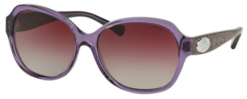 HC 8150 Sunglasses, Purple/Whip Snake Eggplant w/ Purple Grey Gradient Lenses