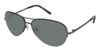 Ted Baker B493 Dayton BROWN W/POLARIZED LENS