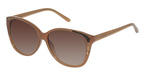 Ted Baker B506 Caramel Brown