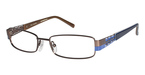 Ted Baker B304 Brown/Blue