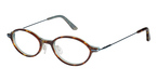 Ted Baker B850 Brown Horn