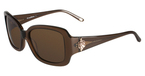 Tommy Bahama TB7019 Brown