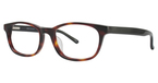 Continental Optical Imports Fregossi 392 Brown