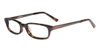 Sight For Students SFS4002 TORTOISE FOSSIL