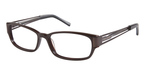 Ted Baker B856 BROWN W/HORN