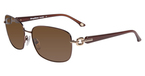 Tommy Bahama TB7022 Brown