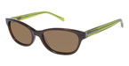 Ted Baker B554 Brown/Lime