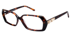 A&A Optical Alluring Tortoise