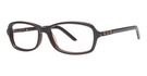 Modern Optical A342 Mocha/Brown
