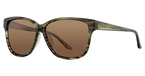 Continental Optical Imports Fregossi Sport 17 Khaki