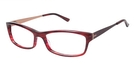 Ted Baker B710 Red Tort