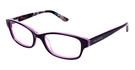 Ted Baker B717 Purple
