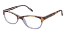 Humphrey's 594002 Tortoise/Purple