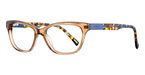 Gant GW 4005 Translucent Brown