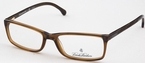 Brooks Brothers BB2009 Brown Trans