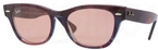 Ray Ban RB4169 Violet Top Texture with Crystal Red Photochromic Lenses
