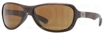 Ray Ban RB4189 Shiny Brown with Brown Lenses