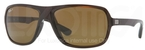 Ray Ban RB4192 Glossy Brown with Polarized Brown Lenses