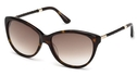 Tod's TO0082 Dark Havana with Gradient Brown Lenses
