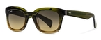 Tod's TO0121 Light Green with Gradient Green Lenses